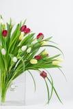 在花瓶的混杂的郁金香 免版税图库摄影