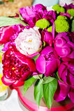 在花瓶的牡丹花束 库存照片
