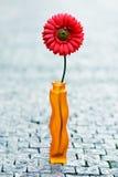 在花瓶的红色雏菊在街道上 免版税库存照片