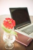 在花瓶的红色flowre 库存照片