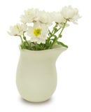 在花瓶的纸雏菊 免版税库存照片