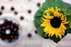 在花瓶的美丽的向日葵,在的甜吸引的樱桃glas 免版税库存照片