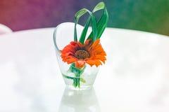 在花瓶的美丽的花与 库存照片