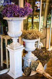 在花瓶的花在花店外面 库存图片