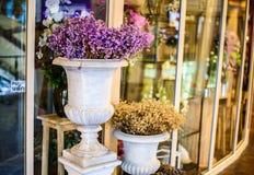 在花瓶的花在花店外面 免版税图库摄影