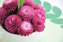 在花瓶的菊花花 库存照片