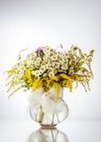 在花瓶的野花 库存图片