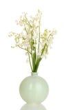 在花瓶的5月百合 库存照片