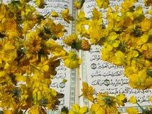 在花的圣经 库存照片