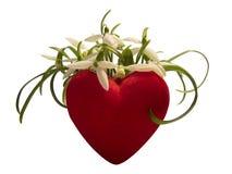 在花的心脏 查出 免版税库存图片