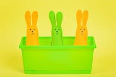在花盆的三只复活节兔子 库存照片