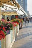 在花盆的红色和桃红色大竺葵在街道咖啡馆大阳台在莫斯科 图库摄影