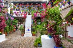 在花盆的花在Cordobf,西班牙街道上的墙壁上  免版税库存照片