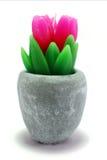 在花盆的蜡烛郁金香 免版税库存图片