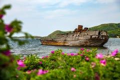 在花背景的凹下去的船  免版税图库摄影
