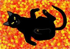 在花背景的猫 库存图片