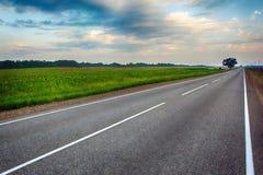 在花草甸之间的空的柏油路在乡下 免版税库存照片