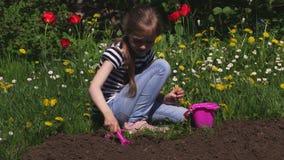 在花附近的小女孩开掘的土壤 股票视频