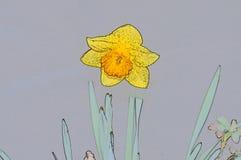 在花黄色narcisuss的水下落 免版税库存照片