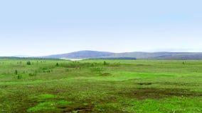在苏格兰的高地的不尽的绿色风景 影视素材
