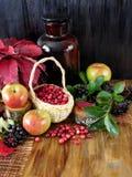 在苹果、黑花揪和红色秋叶围拢的一个柳条筐的蔓越桔 库存照片