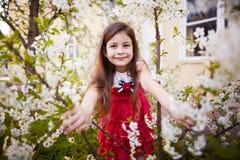 在苹果树花附近的女孩 库存图片