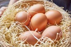 在茅草屋顶设置的鸡蛋 图库摄影