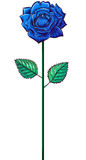 在茎的一朵蓝色玫瑰 库存图片