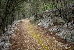 在茨雷斯岛附近的老罗马路在克罗地亚 库存图片