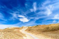 在茫茫荒野中完善的道路 图库摄影