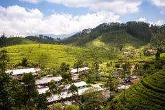 在茶园中的农村山村斯里兰卡的高地的 观看从火车到努沃勒埃利耶 免版税库存照片