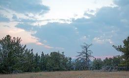 在茶杯峡谷的日落如被看见从普莱尔山的在怀俄明蒙大拿状态行-美国Tillett里奇 库存图片