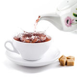 在茶杯的新鲜的健康茶飞溅 库存照片