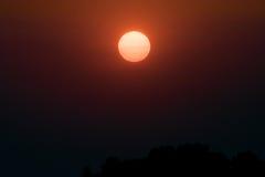 在茶的美好的cloudscape,日落射击 免版税图库摄影