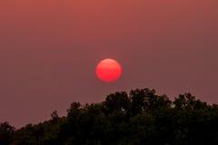 在茶的美好的cloudscape,日落射击 图库摄影