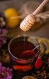 在茶的滴下的甜蜂蜜 图库摄影