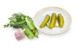 在茶碟的罐装黄瓜和新黄瓜、大蒜和绿色 免版税库存照片