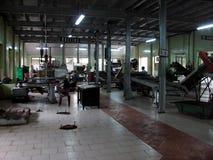 在茶里面的工厂 库存照片
