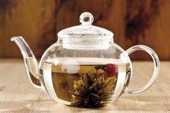 在茶玻璃的茶花 库存照片