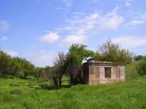 在草中的废墟 免版税库存照片