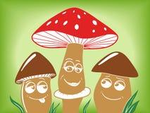 在草传染媒介例证的动画片蘑菇 图库摄影