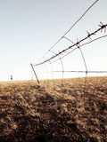在草原的铁丝网篱芭 库存照片