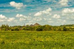 在草和天空的岩石 免版税库存照片