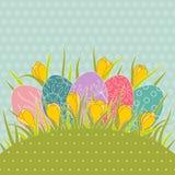 在草和黄色番红花的复活节彩蛋 库存照片