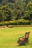 在草土地的庭院长凳 库存图片