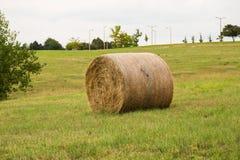 在草地的干草卷 免版税库存图片