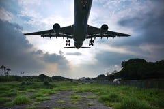 在草地的接近的飞行飞行 免版税库存照片