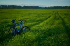 在草地的自行车早晨 免版税库存图片