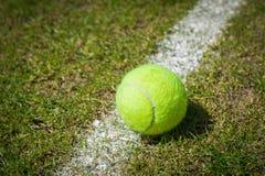在草地网球场的网球 库存图片