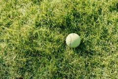在草坪的一网球 免版税库存图片